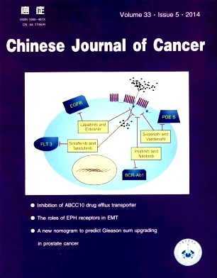 《Chinese Journal of Cancer》2014年05期