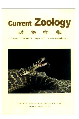 Current Zoology2009年第04期