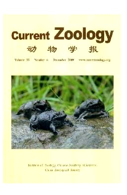 Current Zoology2009年第06期