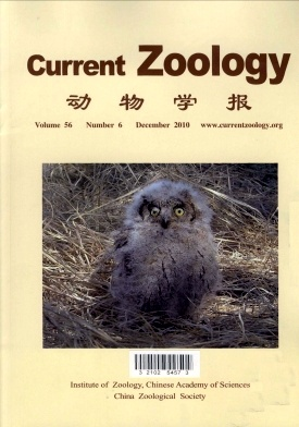 Current Zoology2010年第06期
