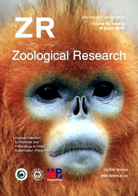 Zoological Research杂志
