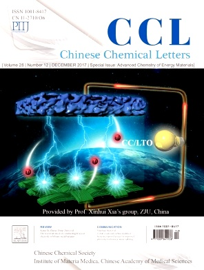 推荐杂志:Chinese Chemical Letters