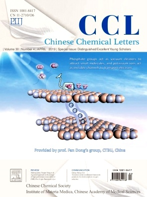 Chinese Chemical Letters2019年第04期