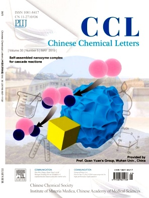 Chinese Chemical Letters2019年第05期