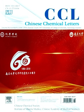 Chinese Chemical Letters2019年第06期