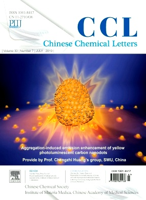 Chinese Chemical Letters2019年第07期