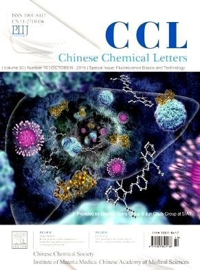 Chinese Chemical Letters2019年第10期