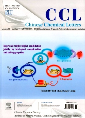 Chinese Chemical Letters2019年第11期