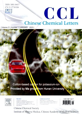 Chinese Chemical Letters2020年第01期