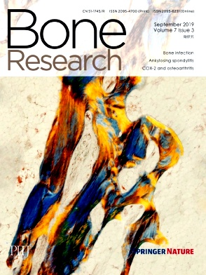 Bone Research2019年第03期