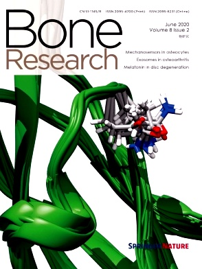 Bone Research