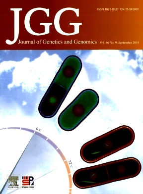 Journal of Genetics and Genomics2019年第09期