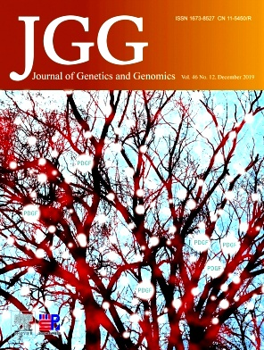 Journal of Genetics and Genomics2019年第12期