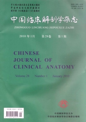 Clinical anatomy journal