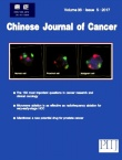 Chinese Journal of Cancer2017年05期