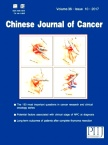 Chinese Journal of Cancer2017年10期