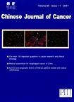 Chinese Journal of Cancer2017年11期