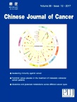 Chinese Journal of Cancer2017年12期