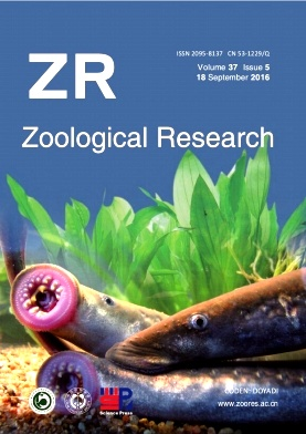 《Zoological Research》2016年05期