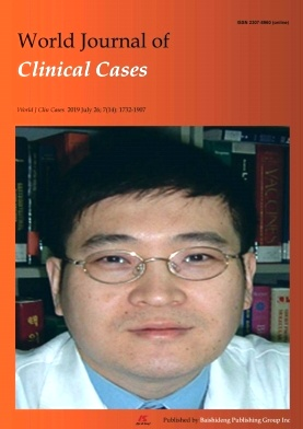 《World Journal of Clinical Cases》2019年14期