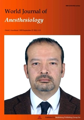 World Journal of Anesthesiology杂志