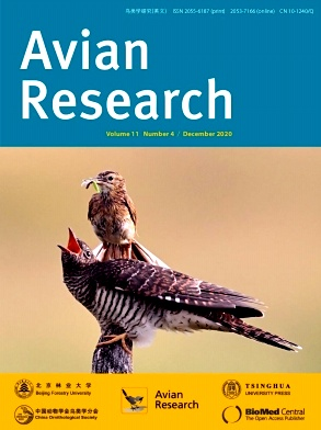 Avian Research