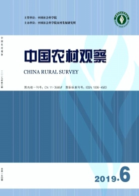 China Rural Survey
